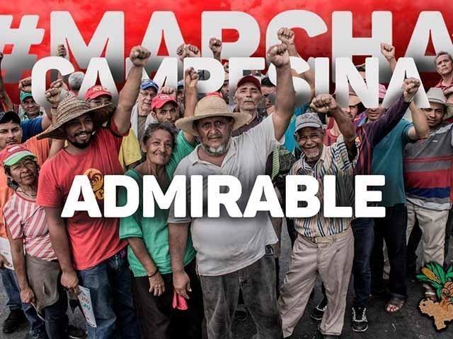 https://www.tatuytv.org/wp-content/uploads/2019/08/marcha1-1.jpg